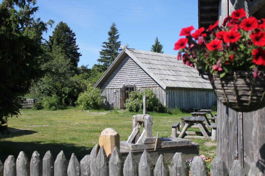 rosala viking centre 15